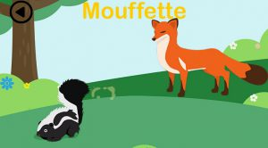 Forest-explorer-moufette