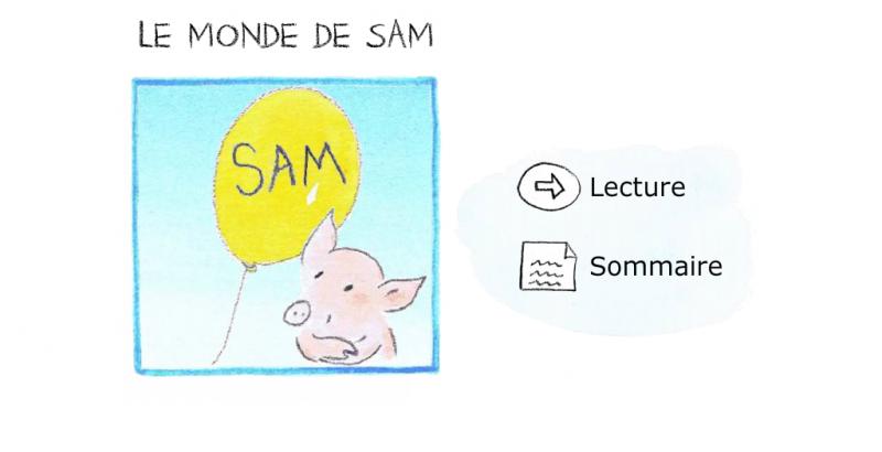 livre interactif le monde de sam