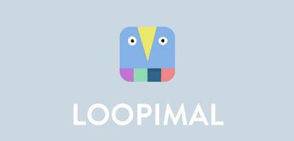 Loopimal application code