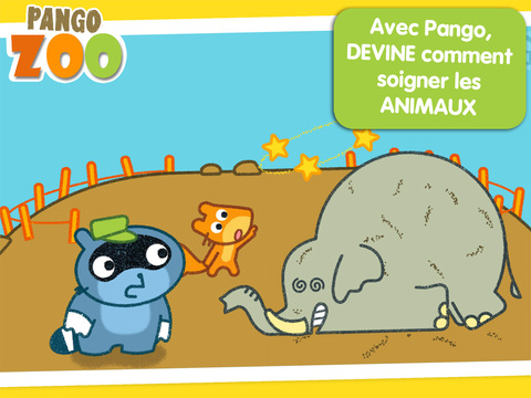 Pango-zoo-elephant