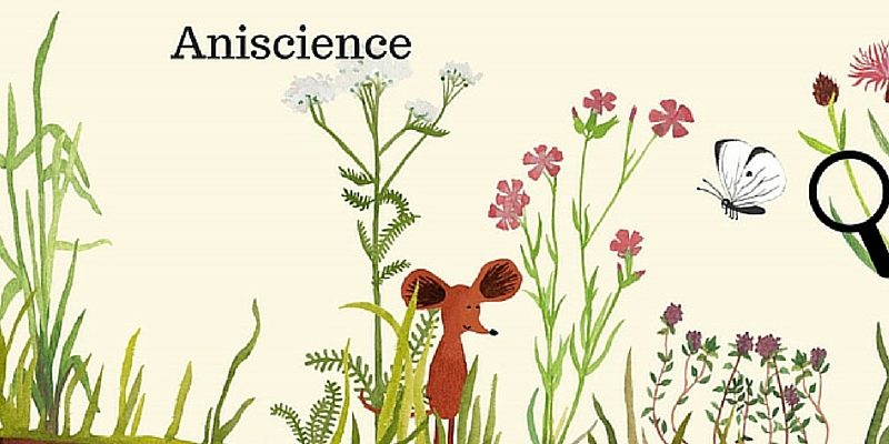 aniscience application nature