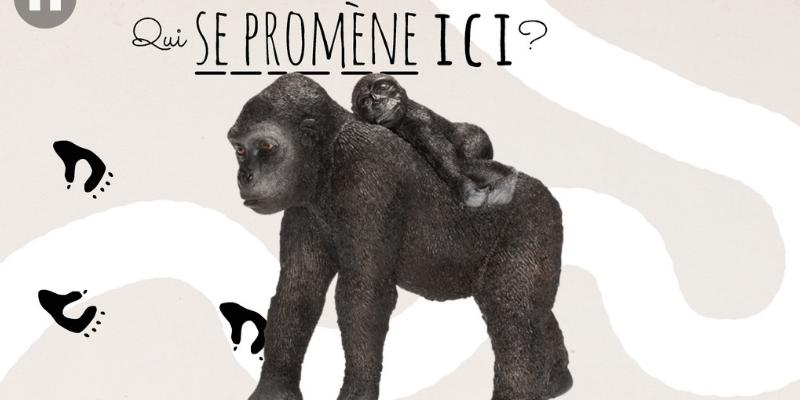 Application animaux qui suis je gorille