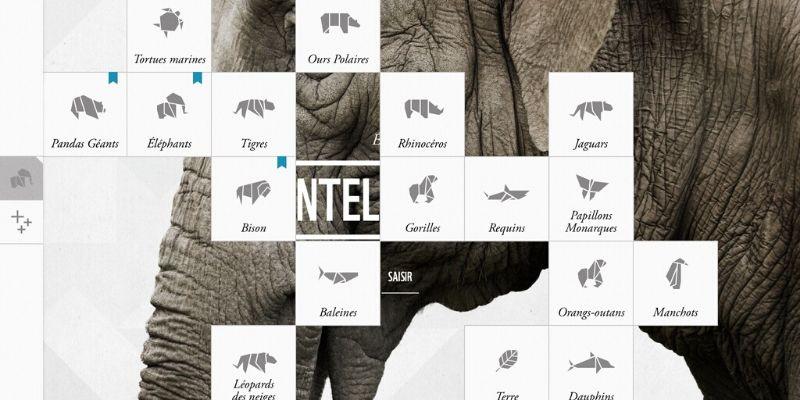 application sur les animaux en voie de disparition WWF