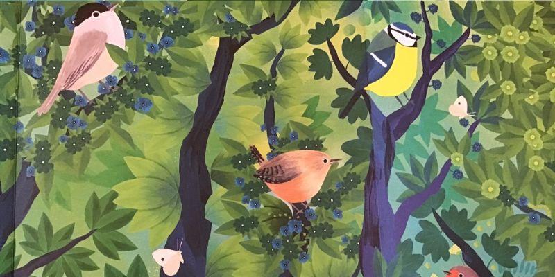 Ecoute le chant des oiseaux frise