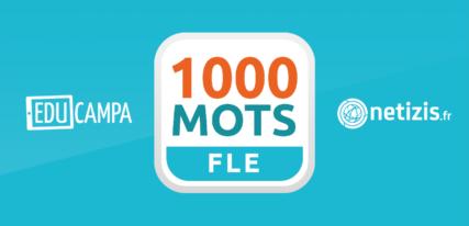 1000 mots fle lecture