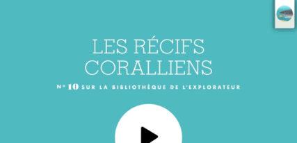 Les récifs coralliens application enfant