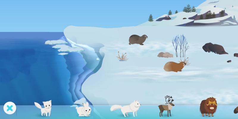 MarcoPolo Arctique banquise
