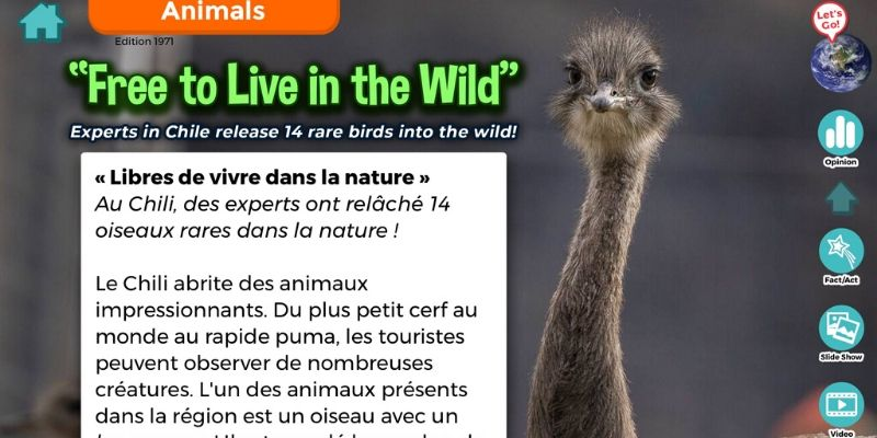 News-O-Matic article animaux
