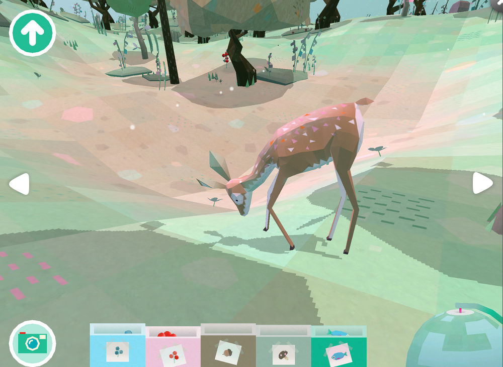 toca_nature_application_enfant_biche