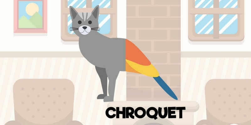 Zappiland chat perroquet